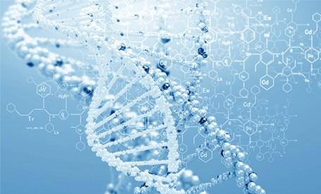 Screening genetic de preimplantare (PGS)